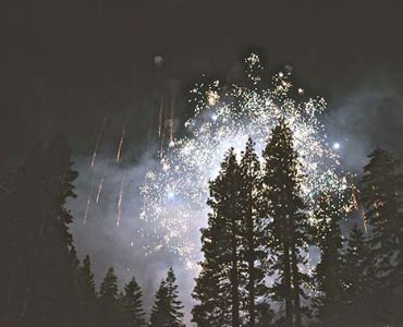 why don't i feel satisfied or fulfilled trees and fireworks