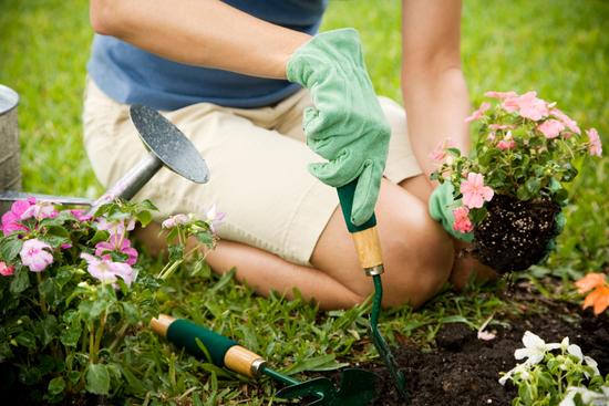 self care tips, gardening